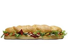 最大的三明治 免版税库存照片