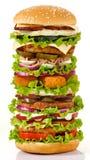 最大的汉堡 免版税库存图片