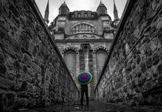 最大的爱迪尔内清真寺selimiye火鸡 免版税库存图片