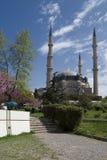 最大的爱迪尔内清真寺selimiye火鸡 免版税图库摄影