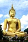 最大的菩萨在世界上 免版税库存图片