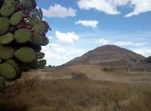 最大的金字塔在墨西哥 免版税库存照片