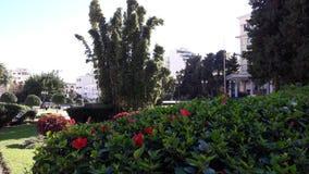 最小的庭院唐基尔市 库存图片