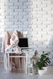 最小的白色客厅 库存图片