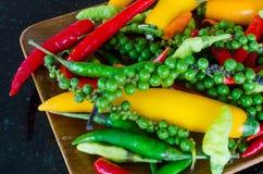 最新鲜和辣椒的五颜六色的混合 库存图片