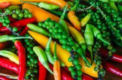 最新鲜和辣椒的五颜六色的混合 库存照片