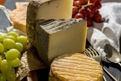 最旧的法国人AOC软绵绵地pudgent黄色乳酪利瓦罗品尝, 免版税库存照片