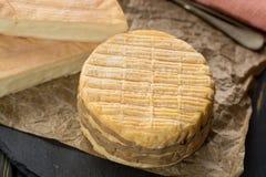 最旧的法国人AOC软绵绵地pudgent黄色乳酪利瓦罗品尝  免版税库存照片