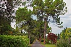 最细致的公园sigurta 图库摄影