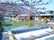 最美丽大气和自然在Arashiyama,日本 图库摄影