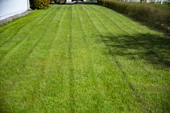 最近在房子附近的被整理的绿色草坪 房子的乡下后院 很好被维护的草坪 免版税库存图片