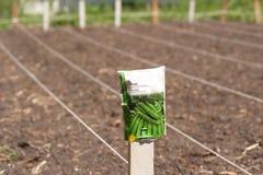 最近荡桨被耕种的土壤 免版税库存图片