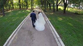 最近被婚姻的夫妇走在绿色公园的,鸟瞰图 股票视频