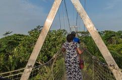 最长的机盖走道在非洲如被看见在Lekki保护中心在Lekki,拉各斯尼日利亚 免版税库存图片