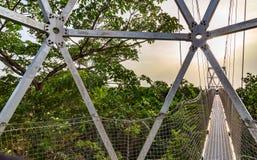 最长的机盖走道在非洲如被看见在Lekki保护中心在Lekki,拉各斯尼日利亚 免版税图库摄影