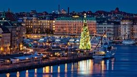 最高的圣诞树,老镇,斯德哥尔摩,瑞典 图库摄影