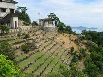 最高的海岛宫岛山 免版税图库摄影