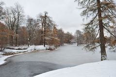 11月。第一雪 库存图片