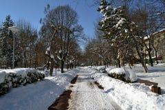 3月一个冷的冬天故事2 免版税库存照片