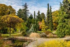 10月下旬在布拉索夫多数美丽的公园 库存图片