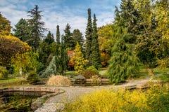 10月下旬在布拉索夫多数美丽的公园 图库摄影