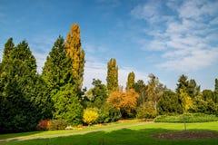 10月下旬在布拉索夫植物园,公园里 库存照片