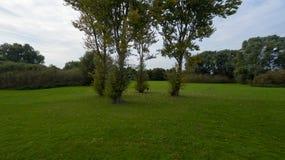 9月下旬的一个公园 库存图片