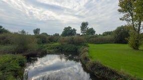 9月下旬的,河的看法一个公园 免版税库存照片