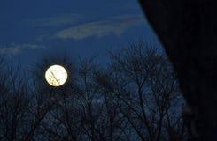 月亮上升 库存照片