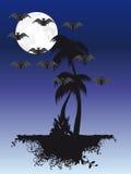 月亮下棕榈树 免版税库存图片