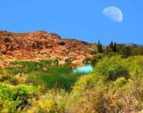 月亮和沙漠池塘 免版税库存照片