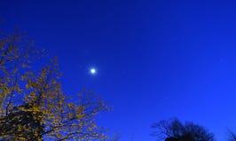 月亮和行星,看见在冬天,从新泽西 免版税库存图片