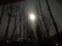 月亮在早期的冬天夜 免版税图库摄影