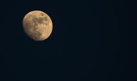 月亮在沙漠 库存图片