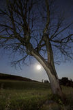 月亮在近地点 库存图片