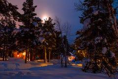 月亮在野营在森林里的冬天 库存照片
