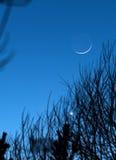 月亮地球反照 免版税库存图片