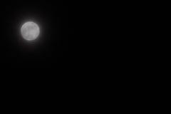 月亮天空 库存图片