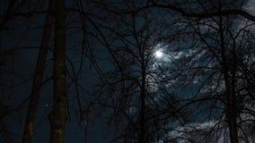月亮定期流逝 库存图片