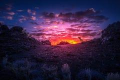 月亮恶魔` s果树园的火山口日出的 免版税库存图片