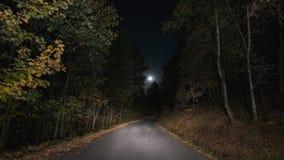 月亮照亮的空的平交道口杉树森林地 寂寞和恐惧概念 免版税图库摄影