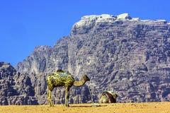 月亮瓦地伦约旦骆驼谷  免版税库存照片