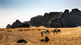 月亮瓦地伦约旦Bedoin骆驼黄沙谷  免版税库存图片