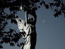 月亮的天使 图库摄影