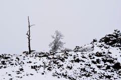 月亮的火山口在冬天 免版税库存照片