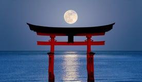 月亮花托 免版税库存照片