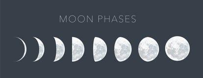 月亮逐步采用小点传染媒介背景 免版税库存照片