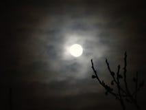 月亮通过云彩 免版税库存图片