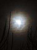 月亮通过云彩 免版税库存照片