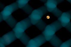 月亮通过篱芭 库存照片
